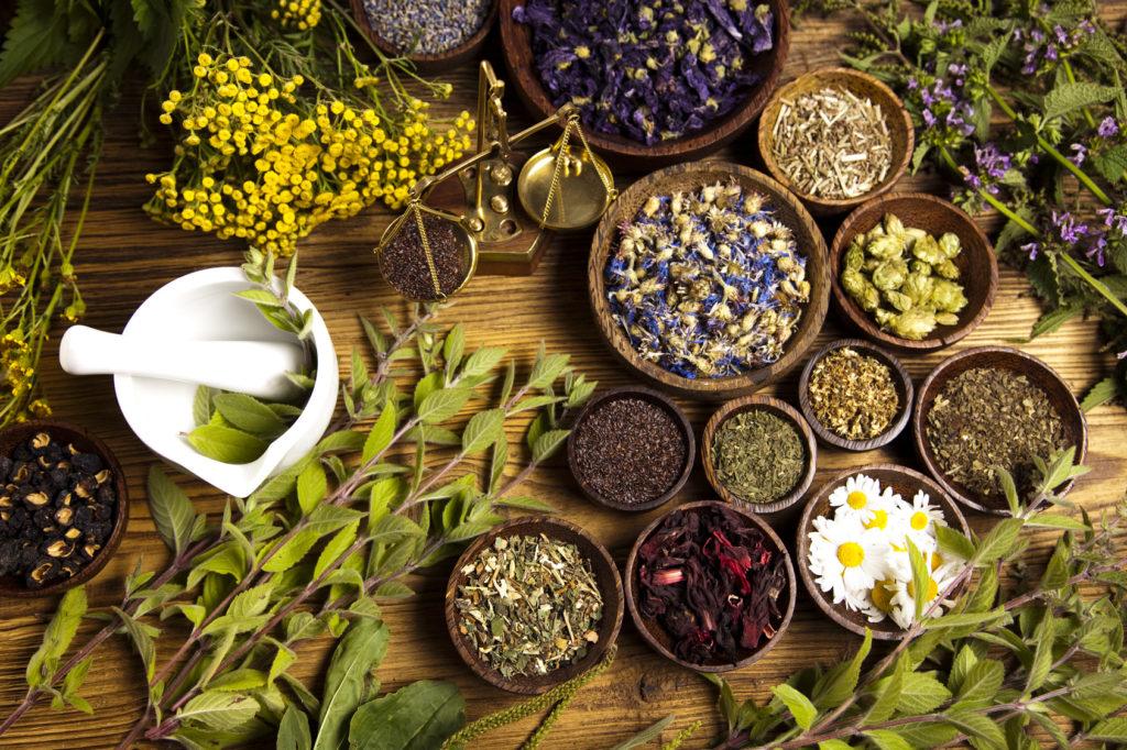 Jardin de simples : plantes médicinales et aromatiques
