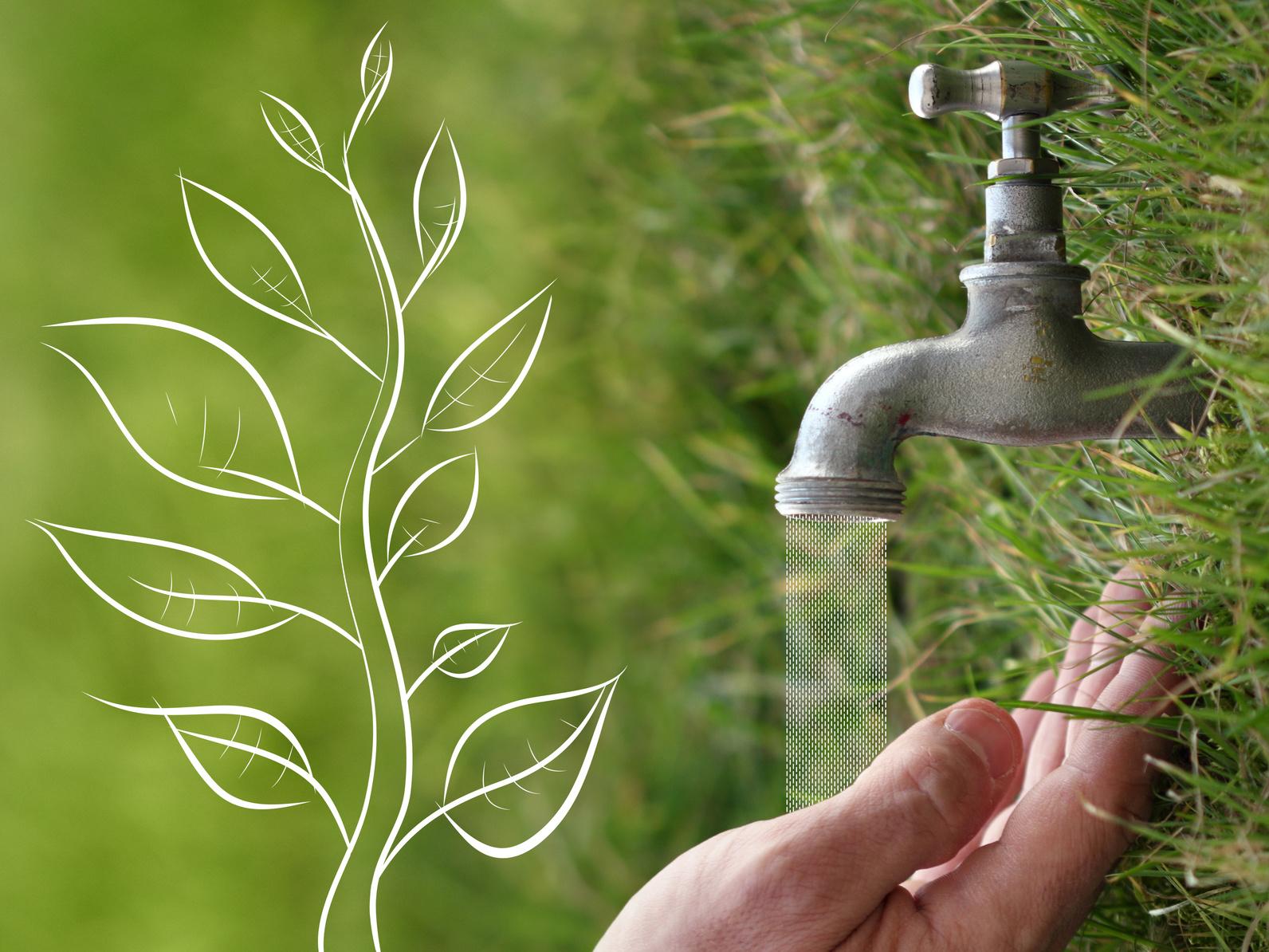 Comment économiser près de 200 litres d'eau par jour et par foyer ?
