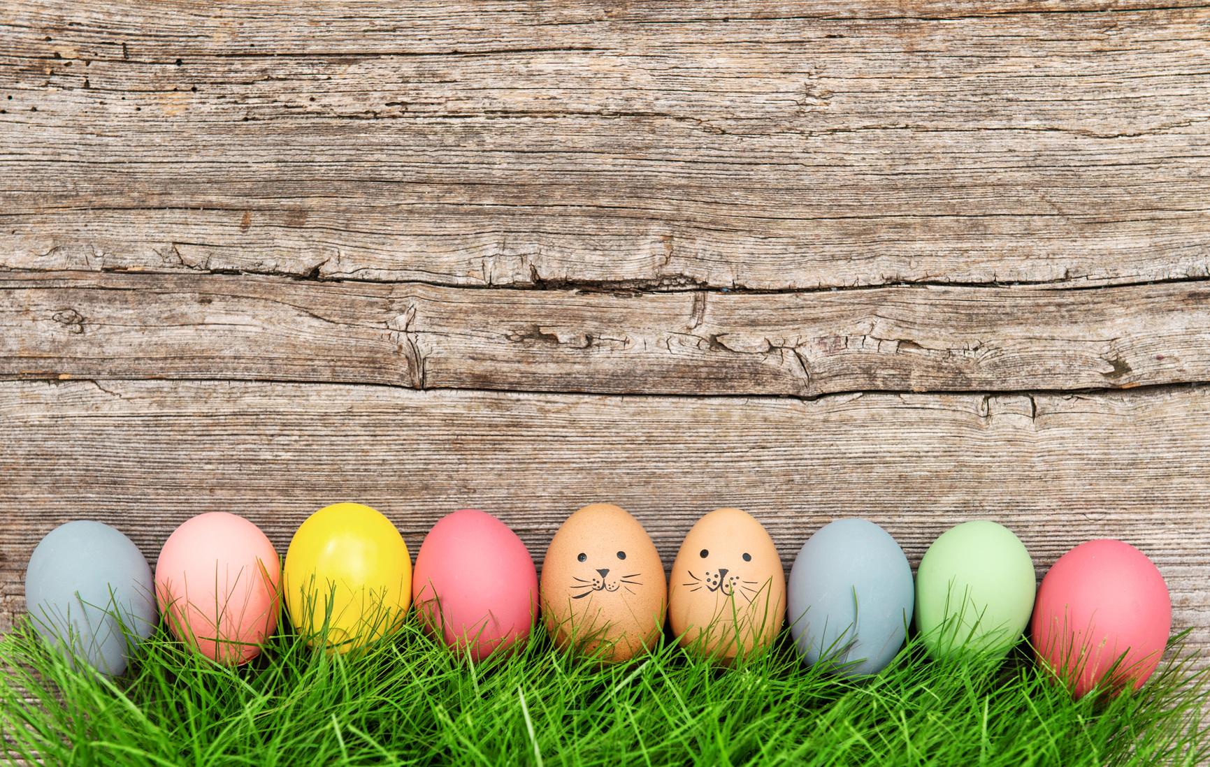 Célébrez Pâques autrement en 2016 !