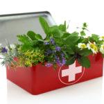 Les trousses à pharmacie naturelles de l'été