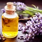 Huile essentielle de lavande : le fleuron de l'aromathérapie !