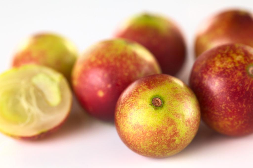 Camu Camu Fruits bio