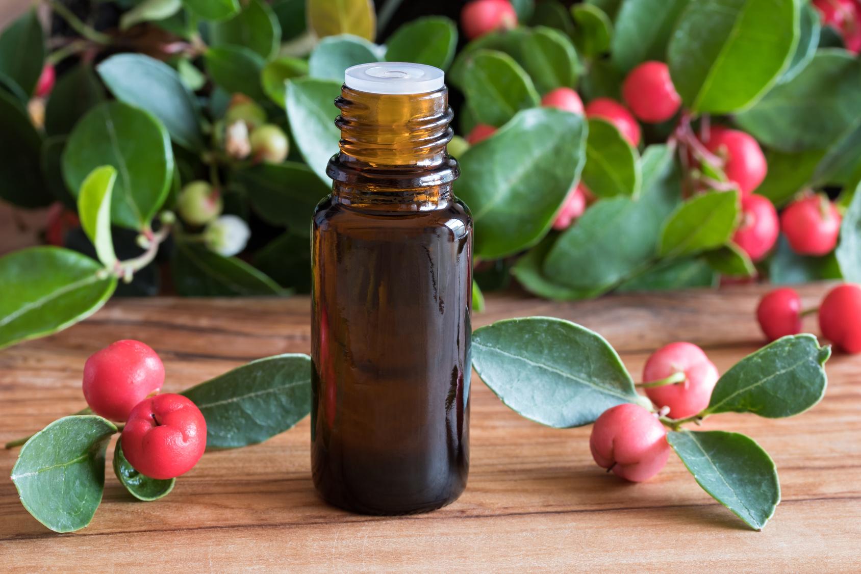 L'huile essentielle de gaulthérie odorante, l'indispensable du sportif !