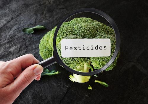 L'utilisation des pesticides en France en forte hausse : soutenons le bio !