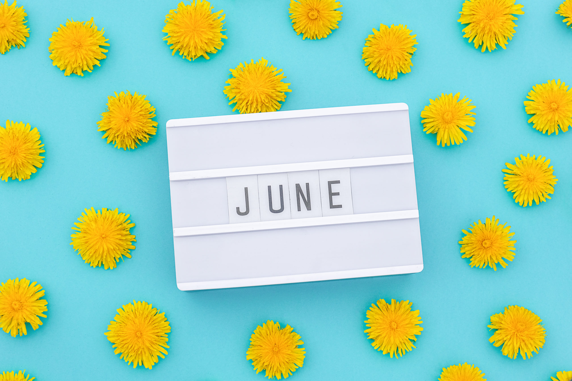 Les essentiels de juin