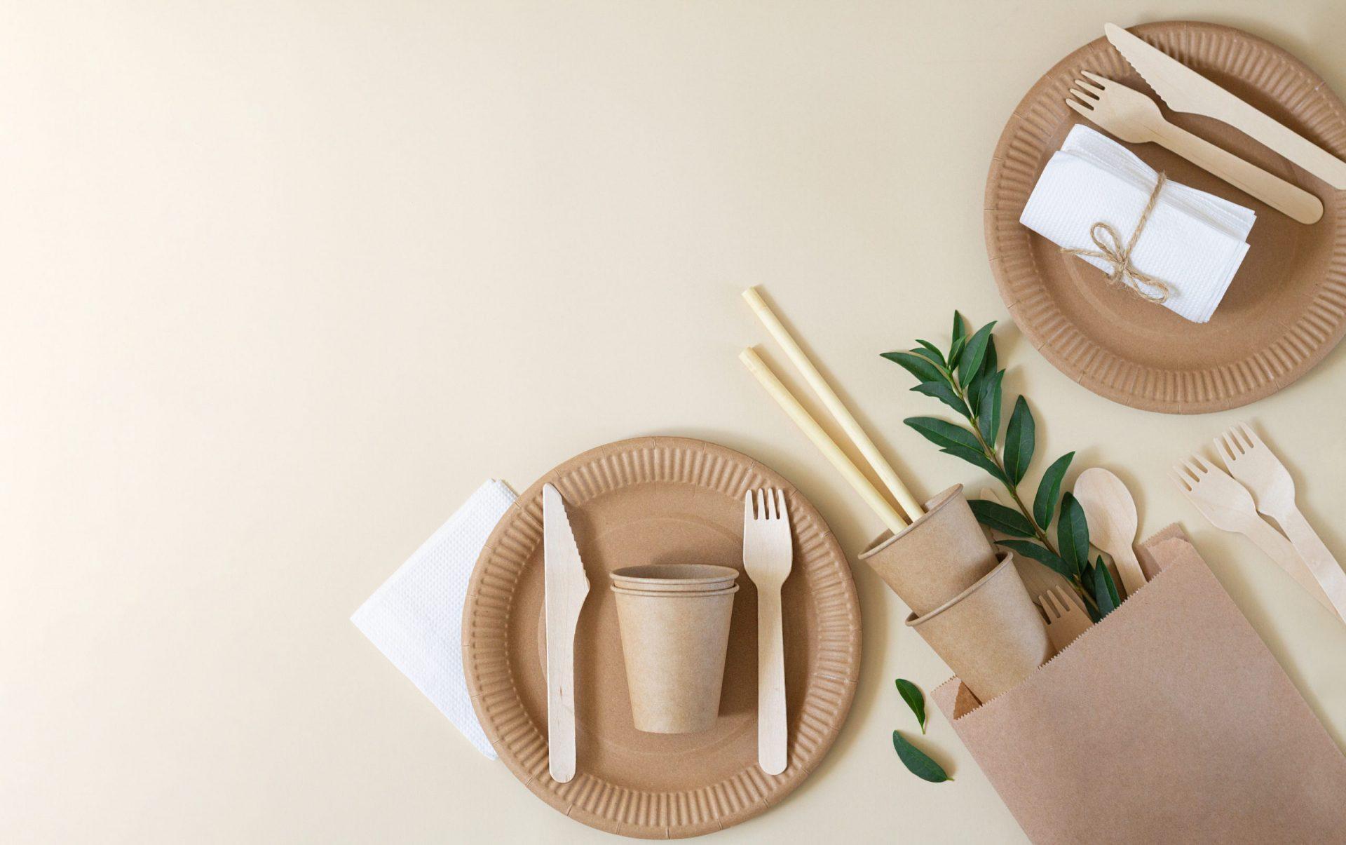 Le bambou, une plante aux multiples usages