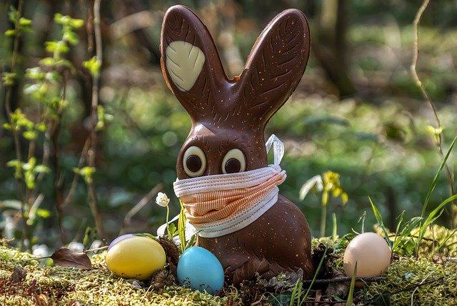 Se faire plaisir avec le bio chocolat
