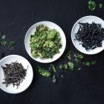 Les micro-algues, des trésors nutritionnels