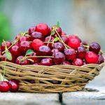 Les cerises, un goût d'été plein de bienfaits