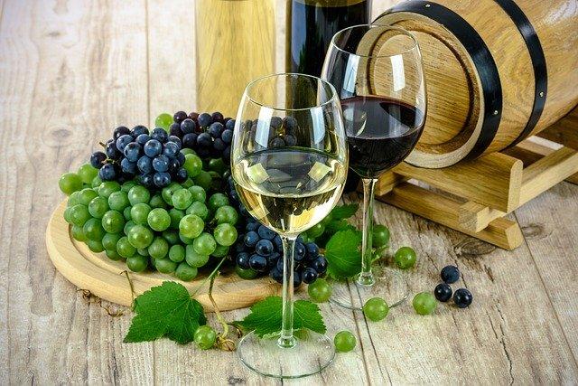 Le succès des vins bio